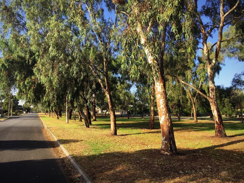 Henley Beach, South Australia, Adelaide, Australia Homestay