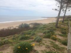 Homestay in Christies Beach