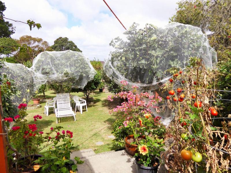 Dandenong North, Victoria, Melbourne, Australia Homestay