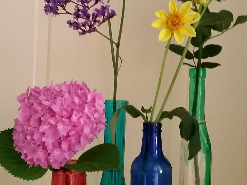 Flowers from the garden in recycled bottles