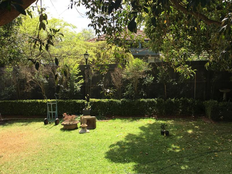 Great big backyard