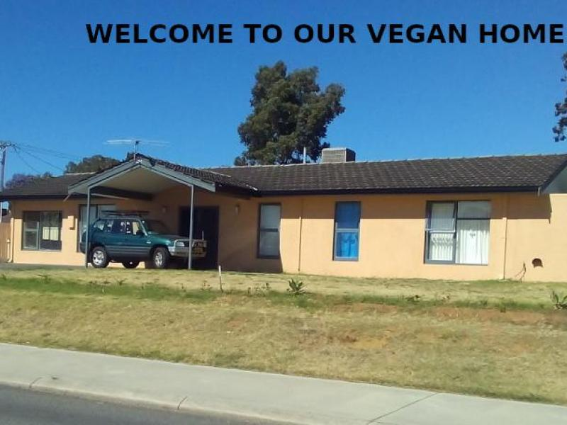 Our vegan home