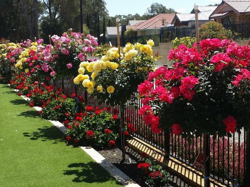 Wellard, Western Australia, Perth, Australia Homestay