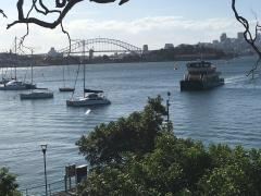 Homestay in Darling Point