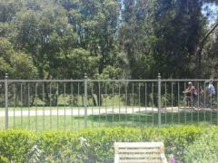 Homestay in Hurlstone Park