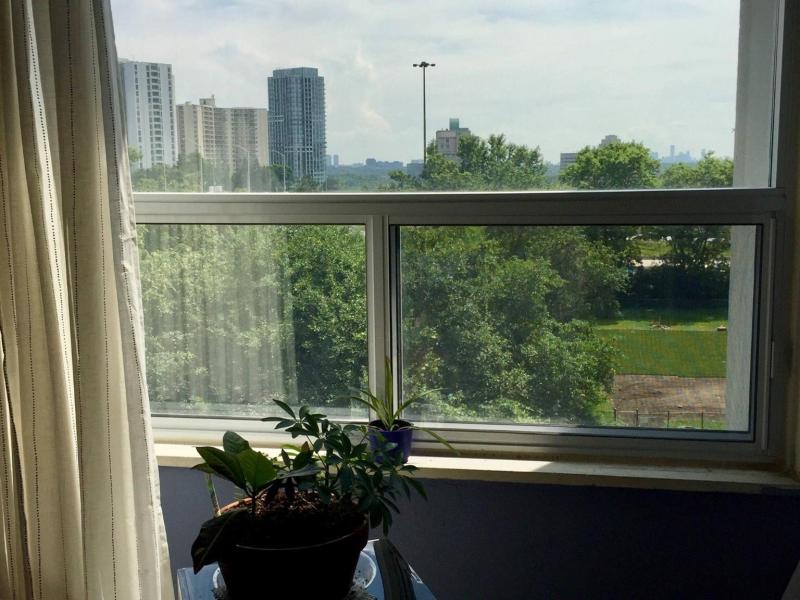 Bedroom view window