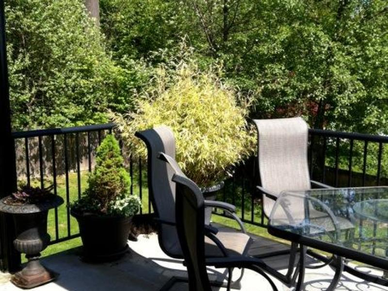 Port Moody, British Columbia, Vancouver, Canada Homestay