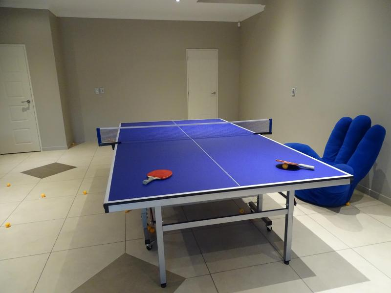Table Tennis Table in Games Room