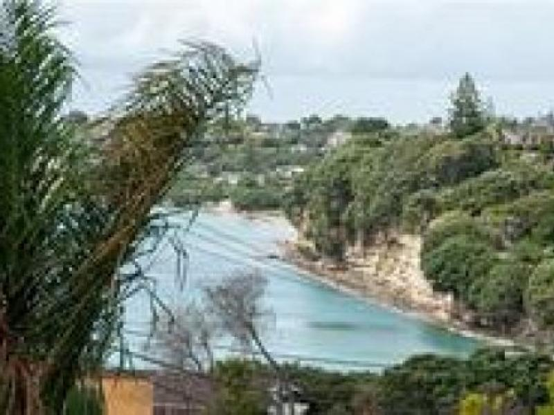 Murrays Bay, Auckland, Auckland, Auckland, New Zealand Homestay