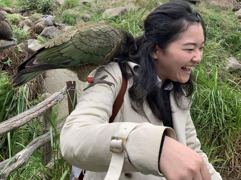 A guest enjoying a Kea interaction at one of the wildlife parks