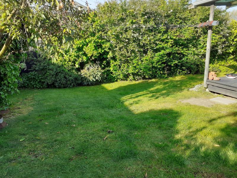 Lush green peaceful garden