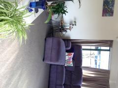 Homestay in Pukete