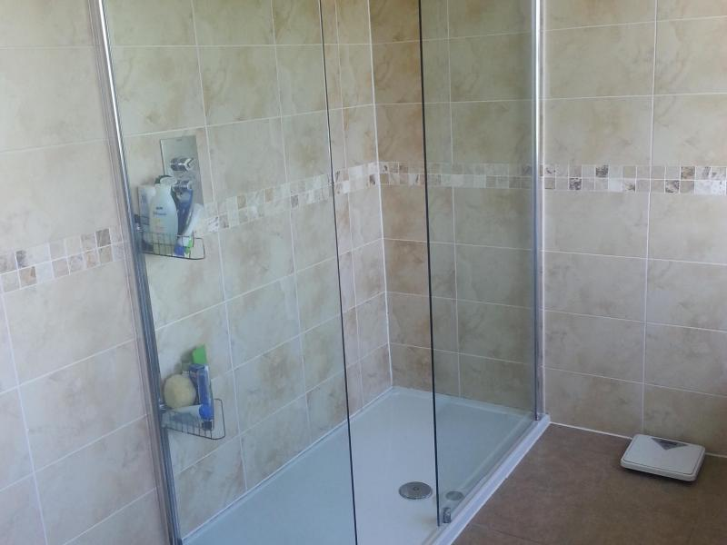 Large bathroom with two showers and bath.